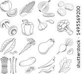vegetables  set    black and... | Shutterstock .eps vector #1495569200
