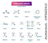 functional groups vector... | Shutterstock .eps vector #1495602413