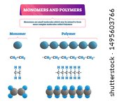 Monomers And Polymers Vector...