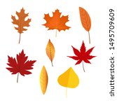 autumn leaves set  vector... | Shutterstock .eps vector #1495709609