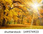 Gold Autumn With Sunlight  And...