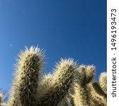 Scottsdale  Arizona   Usa  ...