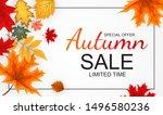 abstract  illustration autumn... | Shutterstock . vector #1496580236