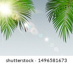 summer time palm leaf with... | Shutterstock . vector #1496581673