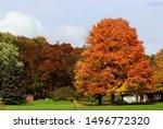 beautiful autumn rural...