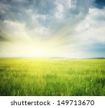 meadow of wheat. nature... | Shutterstock . vector #149713670