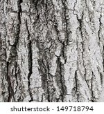 old tree bark for natural...