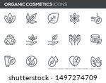 natural and organic cosmetics... | Shutterstock .eps vector #1497274709