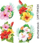 arrangement,bio,bloom,blossom,botany,bouquet,eco,floral,florist,flower,frangipani,growth,hawaii,hawaiian,hibiscus