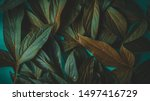 foliage on a blue background ... | Shutterstock . vector #1497416729