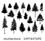 set. silhouettes of pine trees. ... | Shutterstock . vector #1497647690