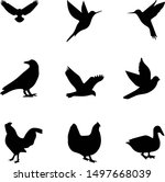 abstract black and white bird... | Shutterstock . vector #1497668039