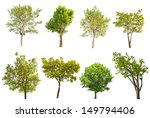 Stock photo set of eight green trees isolated on white background 149794406