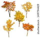 Set of five autumn trees...