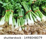 spring onion stacked on tray in ...