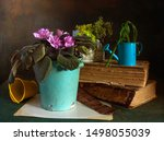 Still Life With Blooming Viole...