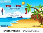diagram of sea breeze with land ... | Shutterstock .eps vector #1498690313