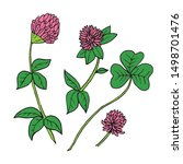 Vector Hand Drawn Ink Clover...