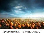 a spooky halloween pumpkin... | Shutterstock . vector #1498709579