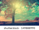 Vintage Photo Of Lonely Tree I...