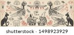 ancient egypt collection. old... | Shutterstock .eps vector #1498923929