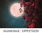 romantic night scene  ...   Shutterstock . vector #1499173220