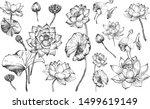 Vector Illustration Of Sketch...