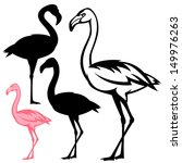 flamingo bird vector outline... | Shutterstock .eps vector #149976263