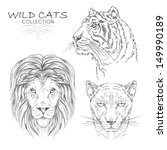 vector set  wild cats collection | Shutterstock .eps vector #149990189