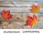 Autumn Maple Leaves On Wooden...