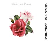 bouquet of roses  watercolor ...   Shutterstock . vector #1500205886