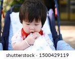 cute asian baby in a stroller   Shutterstock . vector #1500429119