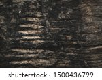 the defferent vintage wooden...   Shutterstock . vector #1500436799