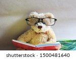 The Cute Teddy Bear Is Reading...