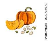 hand drawn colorful pumpkin... | Shutterstock .eps vector #1500736073