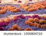 Stock photo purple and orange petals lay on the ground as an ornament for a local offering on the day of the 1500804710