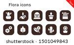 flora icon set. 10 filled flora ... | Shutterstock .eps vector #1501049843