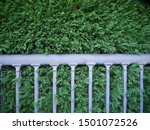 Park Fence Rail Overgrown With...