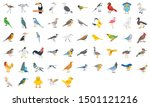 Birds illustration Pack with with variation hues and wonderful style too, Perfect set for some other sort of structure. Layered. Completely editable.
