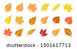 set of yellow leaves. autumn... | Shutterstock .eps vector #1501617713