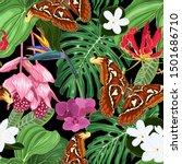 large exotic butterflies ... | Shutterstock .eps vector #1501686710