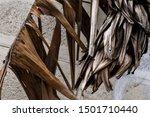 Close Up Dried Banana Leaves...
