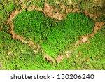 grass stones and texture   Shutterstock . vector #150206240