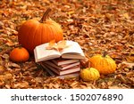 Autumn Books. Reading Books...