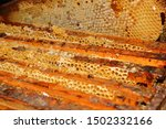 Small photo of Beautiful tradional wooden honeycombs with alveolus in the sun and golden color.