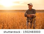 Senior Farmer Standing In...