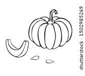 vector pumpkin or squash... | Shutterstock .eps vector #1502985269