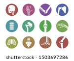 human bone and joint set ... | Shutterstock .eps vector #1503697286