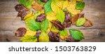 Autumn Beech Leaves On Wooden...