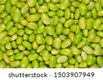 edamame. green soybeans. also... | Shutterstock . vector #1503907949